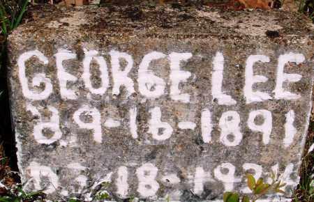 LEE, GEORGE - Baxter County, Arkansas | GEORGE LEE - Arkansas Gravestone Photos