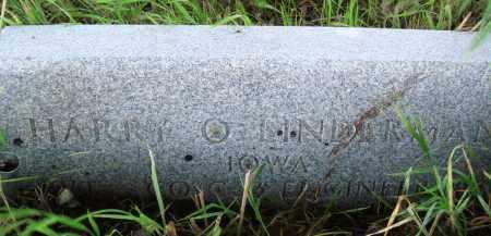 LINDERMAN (VETERAN), HARRY O - Baxter County, Arkansas   HARRY O LINDERMAN (VETERAN) - Arkansas Gravestone Photos