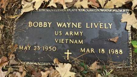 LIVELY  (VETERAN VIET), BOBBY WAYNE - Baxter County, Arkansas | BOBBY WAYNE LIVELY  (VETERAN VIET) - Arkansas Gravestone Photos