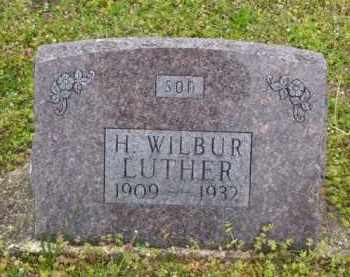 LUTHER, H. WILBUR - Baxter County, Arkansas | H. WILBUR LUTHER - Arkansas Gravestone Photos