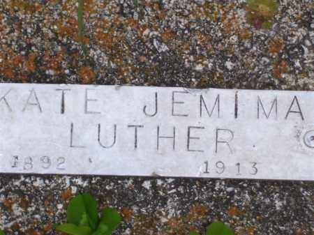 LUTHER, KATE JEMIMA - Baxter County, Arkansas | KATE JEMIMA LUTHER - Arkansas Gravestone Photos