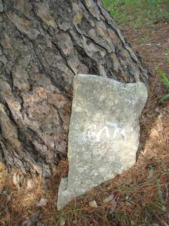 MARTIN, G A - Baxter County, Arkansas | G A MARTIN - Arkansas Gravestone Photos