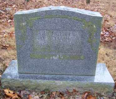 MCLEHANEY, GEORGE LEE - Baxter County, Arkansas | GEORGE LEE MCLEHANEY - Arkansas Gravestone Photos