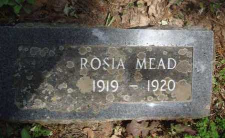 MEAD, ROSIA - Baxter County, Arkansas | ROSIA MEAD - Arkansas Gravestone Photos