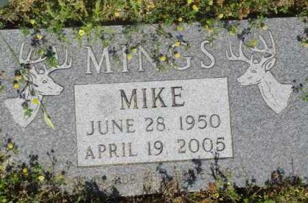 MINGS, MIKE - Baxter County, Arkansas | MIKE MINGS - Arkansas Gravestone Photos