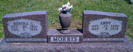 MORRIS, ANDY - Baxter County, Arkansas | ANDY MORRIS - Arkansas Gravestone Photos