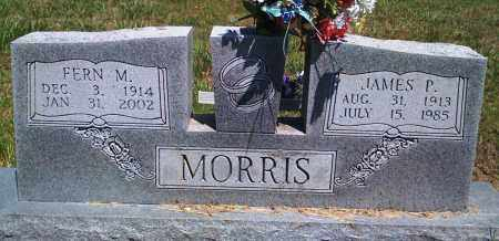 MORRIS, FERN M - Baxter County, Arkansas | FERN M MORRIS - Arkansas Gravestone Photos