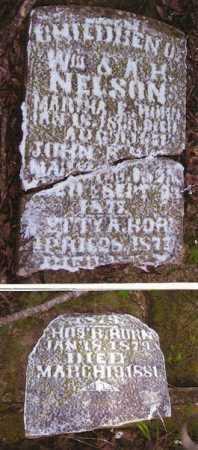 NELSON, JOHN R. - Baxter County, Arkansas | JOHN R. NELSON - Arkansas Gravestone Photos