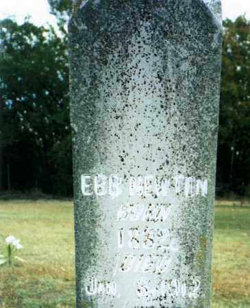 NEWTON (VETERAN UNION), EBB - Baxter County, Arkansas | EBB NEWTON (VETERAN UNION) - Arkansas Gravestone Photos