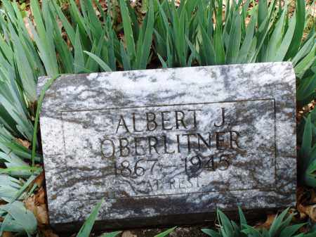 OBERLITNER, ALBERT J - Baxter County, Arkansas | ALBERT J OBERLITNER - Arkansas Gravestone Photos