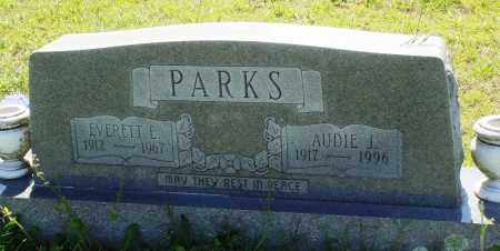 PARKS, EVERETT E - Baxter County, Arkansas | EVERETT E PARKS - Arkansas Gravestone Photos