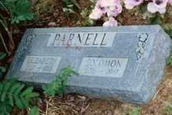 ROBINSON PARNELL, ELIZABETH - Baxter County, Arkansas | ELIZABETH ROBINSON PARNELL - Arkansas Gravestone Photos