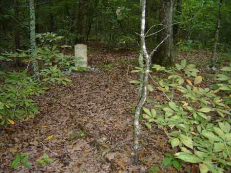 *PAYNE CAMPBELL,  - Baxter County, Arkansas |  *PAYNE CAMPBELL - Arkansas Gravestone Photos