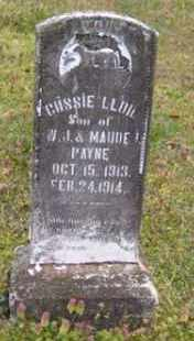 PAYNE, GUSSIE LLOID - Baxter County, Arkansas | GUSSIE LLOID PAYNE - Arkansas Gravestone Photos