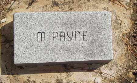 PAYNE, M - Baxter County, Arkansas | M PAYNE - Arkansas Gravestone Photos
