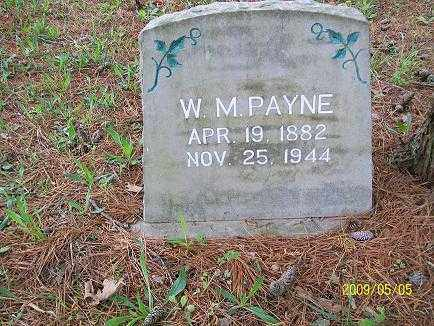 PAYNE, WILLIAM MITCHELL - Baxter County, Arkansas | WILLIAM MITCHELL PAYNE - Arkansas Gravestone Photos