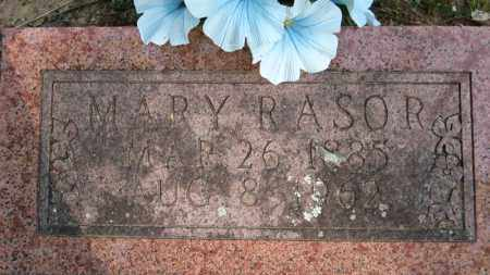 RASOR, MARY - Baxter County, Arkansas | MARY RASOR - Arkansas Gravestone Photos