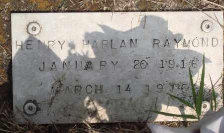 RAYMOND, HENRY HARLAN (2) - Baxter County, Arkansas | HENRY HARLAN (2) RAYMOND - Arkansas Gravestone Photos
