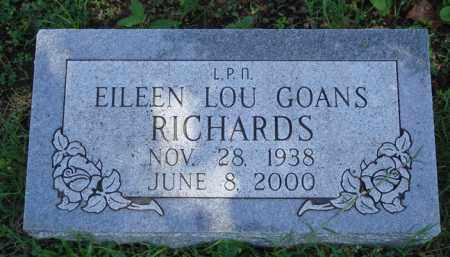 GOANS RICHARDS, EILEEN LOU - Baxter County, Arkansas | EILEEN LOU GOANS RICHARDS - Arkansas Gravestone Photos