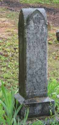 ROBERTSON, WILLIAM - Baxter County, Arkansas | WILLIAM ROBERTSON - Arkansas Gravestone Photos