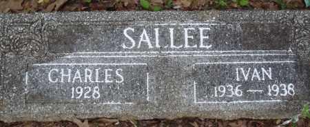 SALLEE, CHARLES - Baxter County, Arkansas | CHARLES SALLEE - Arkansas Gravestone Photos