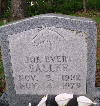 SALLEE, JOE EVERT - Baxter County, Arkansas | JOE EVERT SALLEE - Arkansas Gravestone Photos