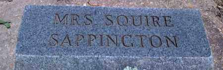 SAPPINGTON, MRS. SQUIRE - Baxter County, Arkansas | MRS. SQUIRE SAPPINGTON - Arkansas Gravestone Photos