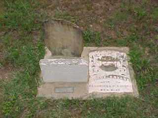 SAVAGE, JOEL ZEBULON - Baxter County, Arkansas | JOEL ZEBULON SAVAGE - Arkansas Gravestone Photos