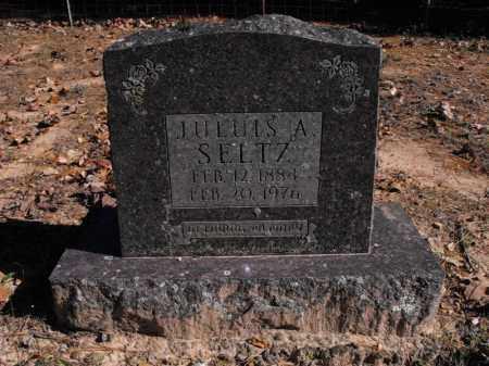 SELTZ, JULIUS A. - Baxter County, Arkansas | JULIUS A. SELTZ - Arkansas Gravestone Photos