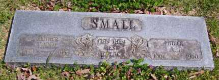 STARRETT SMALL, MARTHA LOUVINA 'VINNIE' - Baxter County, Arkansas | MARTHA LOUVINA 'VINNIE' STARRETT SMALL - Arkansas Gravestone Photos