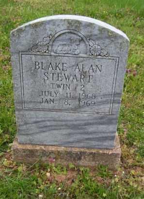 "STEWART, BLAKE ALAN ""TWIN # 2"" - Baxter County, Arkansas | BLAKE ALAN ""TWIN # 2"" STEWART - Arkansas Gravestone Photos"