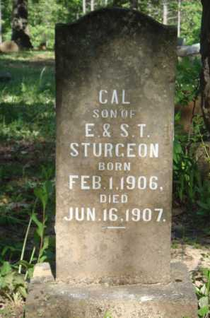 STURGEON, CAL - Baxter County, Arkansas | CAL STURGEON - Arkansas Gravestone Photos