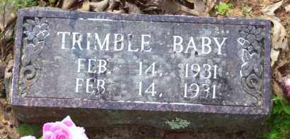 TRIMBLE, BABY - Baxter County, Arkansas | BABY TRIMBLE - Arkansas Gravestone Photos