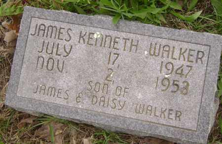 WALKER, JAMES KENNETH - Baxter County, Arkansas | JAMES KENNETH WALKER - Arkansas Gravestone Photos