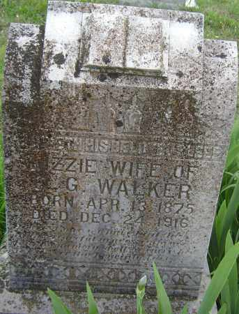 WALKER, LIZZIE - Baxter County, Arkansas | LIZZIE WALKER - Arkansas Gravestone Photos