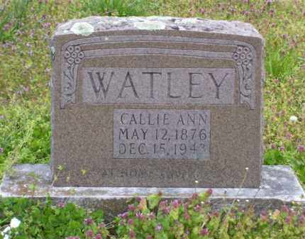 WATLEY, CALLIE ANN - Baxter County, Arkansas | CALLIE ANN WATLEY - Arkansas Gravestone Photos