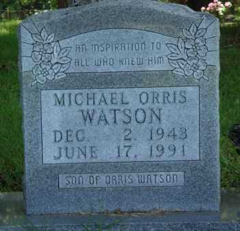 WATSON, MICHAEL ORRIS - Baxter County, Arkansas | MICHAEL ORRIS WATSON - Arkansas Gravestone Photos