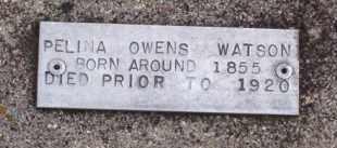 OWENS WATSON, PELINA - Baxter County, Arkansas | PELINA OWENS WATSON - Arkansas Gravestone Photos