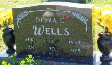 WELLS, DEBRA C - Baxter County, Arkansas | DEBRA C WELLS - Arkansas Gravestone Photos