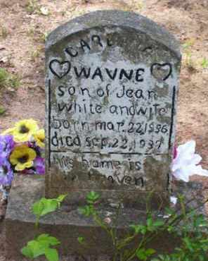WHITE, WAYNE - Baxter County, Arkansas | WAYNE WHITE - Arkansas Gravestone Photos