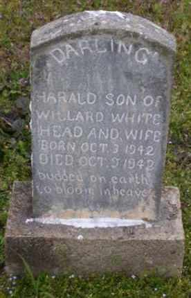 WHITEHEAD, HARALD - Baxter County, Arkansas   HARALD WHITEHEAD - Arkansas Gravestone Photos