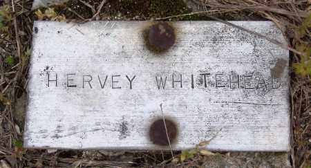 WHITEHEAD, HERVEY - Baxter County, Arkansas | HERVEY WHITEHEAD - Arkansas Gravestone Photos