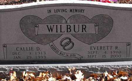 WILBUR, CALLIE D. - Baxter County, Arkansas | CALLIE D. WILBUR - Arkansas Gravestone Photos