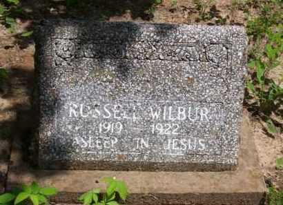 WILBUR, RUSSELL - Baxter County, Arkansas | RUSSELL WILBUR - Arkansas Gravestone Photos
