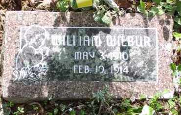WILBUR, WILLIAM M. - Baxter County, Arkansas | WILLIAM M. WILBUR - Arkansas Gravestone Photos