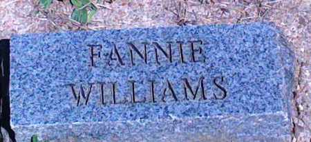 WILLIAMS, FANNIE - Baxter County, Arkansas | FANNIE WILLIAMS - Arkansas Gravestone Photos