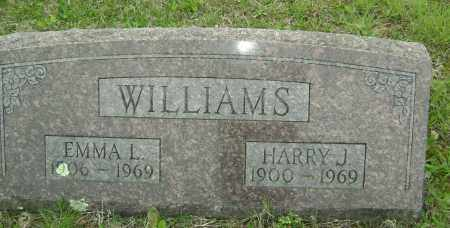 WILLIAMS, EMMA L. - Baxter County, Arkansas | EMMA L. WILLIAMS - Arkansas Gravestone Photos