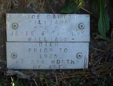 WILLIAMS, JOE DAVID - Baxter County, Arkansas | JOE DAVID WILLIAMS - Arkansas Gravestone Photos