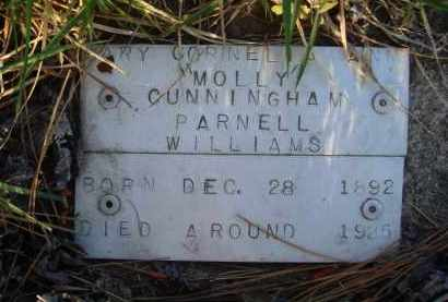 "CUNNINGHAM WILLIAMS, MARY CORNELIA ANN ""MOLLY"" - Baxter County, Arkansas 