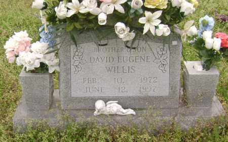 WILLIS, DAVID EUGENE - Baxter County, Arkansas | DAVID EUGENE WILLIS - Arkansas Gravestone Photos